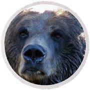 Bear On Grouse Round Beach Towel