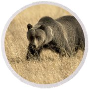 Bear On The Prowl Round Beach Towel