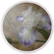 Bearded Iris 'gnuz Spread' Round Beach Towel
