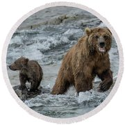 Bears Being Watchful  Round Beach Towel