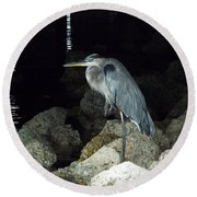 Beautiful And Patience Heron Round Beach Towel