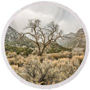Beautiful Bare Tree Round Beach Towel