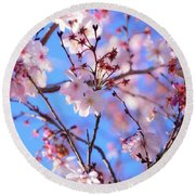 Beautiful Blossoms Blooming  For Spring In Georgia Round Beach Towel