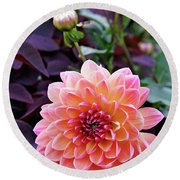 Beautiful Dahlia Round Beach Towel