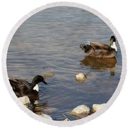Beautiful Ducks Round Beach Towel