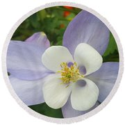 Round Beach Towel featuring the photograph Beautiful Flower by Jasna Gopic
