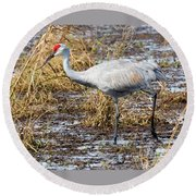 Beautiful Day For A Walk -sandhill Crane   Round Beach Towel