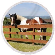 Beautiful Horse In Kinneswood Round Beach Towel