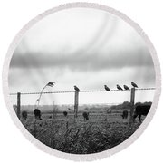 Beautiful Little Birds On Fence Round Beach Towel
