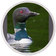 Beautiful Loon Close Up Round Beach Towel
