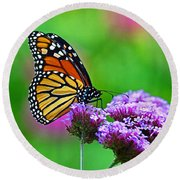 Round Beach Towel featuring the photograph Beautiful Monarch by Rodney Campbell