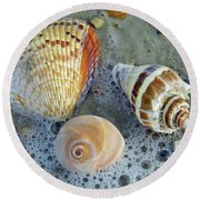 Beautiful Shells In The Surf Round Beach Towel