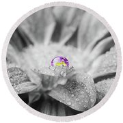 Beautiful Splash Of Purple On A Daisy In The Garden Round Beach Towel