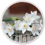 Beautiful Spring Paperwhites Round Beach Towel