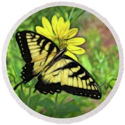 Beautiful Swallowtail Butterfly Round Beach Towel