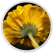 Round Beach Towel featuring the photograph Beautiful Underside by Jeff Swan