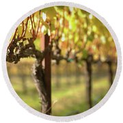 Beautiful Vineyard In Napa Valley Round Beach Towel