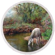 Beautiful White Horse And Enchanting Spring Round Beach Towel