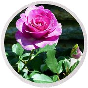 Round Beach Towel featuring the photograph Beauty And The Bud by Will Borden