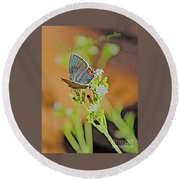 Beauty Flutters By Round Beach Towel