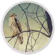 Red-tailed Hawk On Watch Round Beach Towel