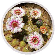 Beauty In The Desert Round Beach Towel