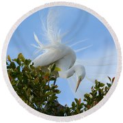 Round Beach Towel featuring the photograph Beauty In The Treetop by Fraida Gutovich