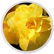 Beauty In Yellow Round Beach Towel