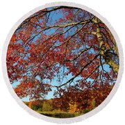 Round Beach Towel featuring the photograph Beauty Of Fall by Karol Livote