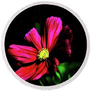 Round Beach Towel featuring the photograph Beauty  by Tom Prendergast