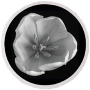 Round Beach Towel featuring the photograph Beauty Within by Terence Davis