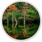 Beaver's Bend Color Explosion Round Beach Towel