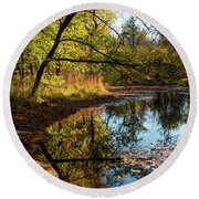 Round Beach Towel featuring the photograph Beaver's Pond by Iris Greenwell
