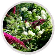 Round Beach Towel featuring the photograph Beckoning Butterfly Bush by Hanne Lore Koehler