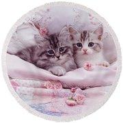Bedtime Kitties Round Beach Towel