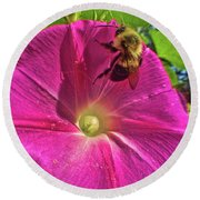 Bee And Morning Glory Round Beach Towel