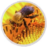 Bee And Sunflower Round Beach Towel