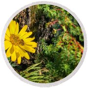 Bee And Yellow Flower Round Beach Towel by Henri Irizarri