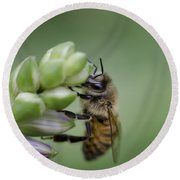Busy Bee Round Beach Towel by Andrea Silies