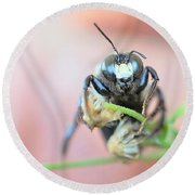 Bee Busy Round Beach Towel
