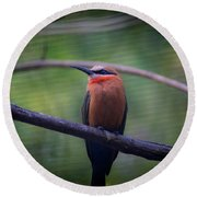 Bee-eater Round Beach Towel