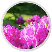 Bee Flying Over Catawba Rhododendron Round Beach Towel