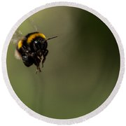 Bee Flying - View From Front Round Beach Towel