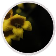 Bee In A Trumpet Round Beach Towel