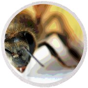 Bee In Macro 5 Round Beach Towel
