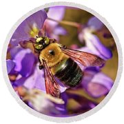 Bee In Spring Round Beach Towel