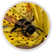 Round Beach Towel featuring the photograph Bee On A Lily by William Selander