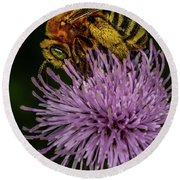 Round Beach Towel featuring the photograph Bee On A Thistle by Paul Freidlund