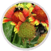 Bee On Colorful Flowers Round Beach Towel