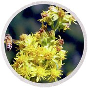 Round Beach Towel featuring the photograph Bee On Goldenrod by Meta Gatschenberger